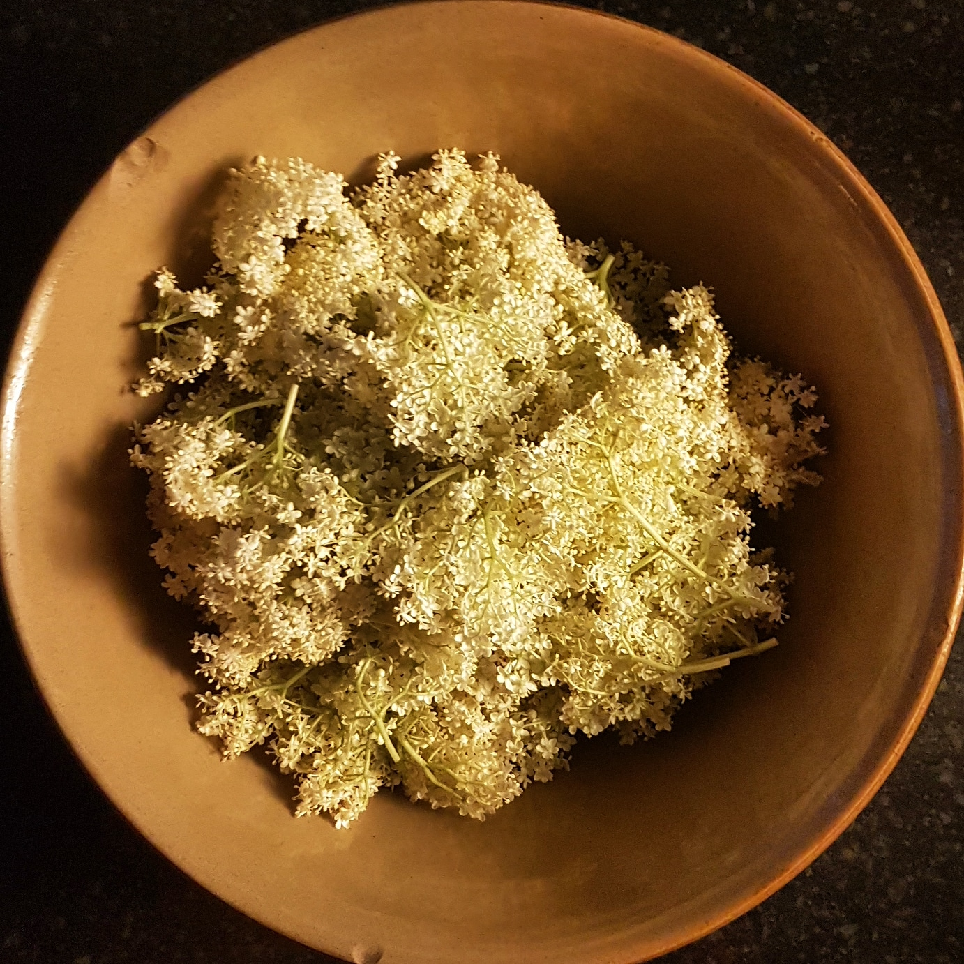 Elderflowers in a bowl